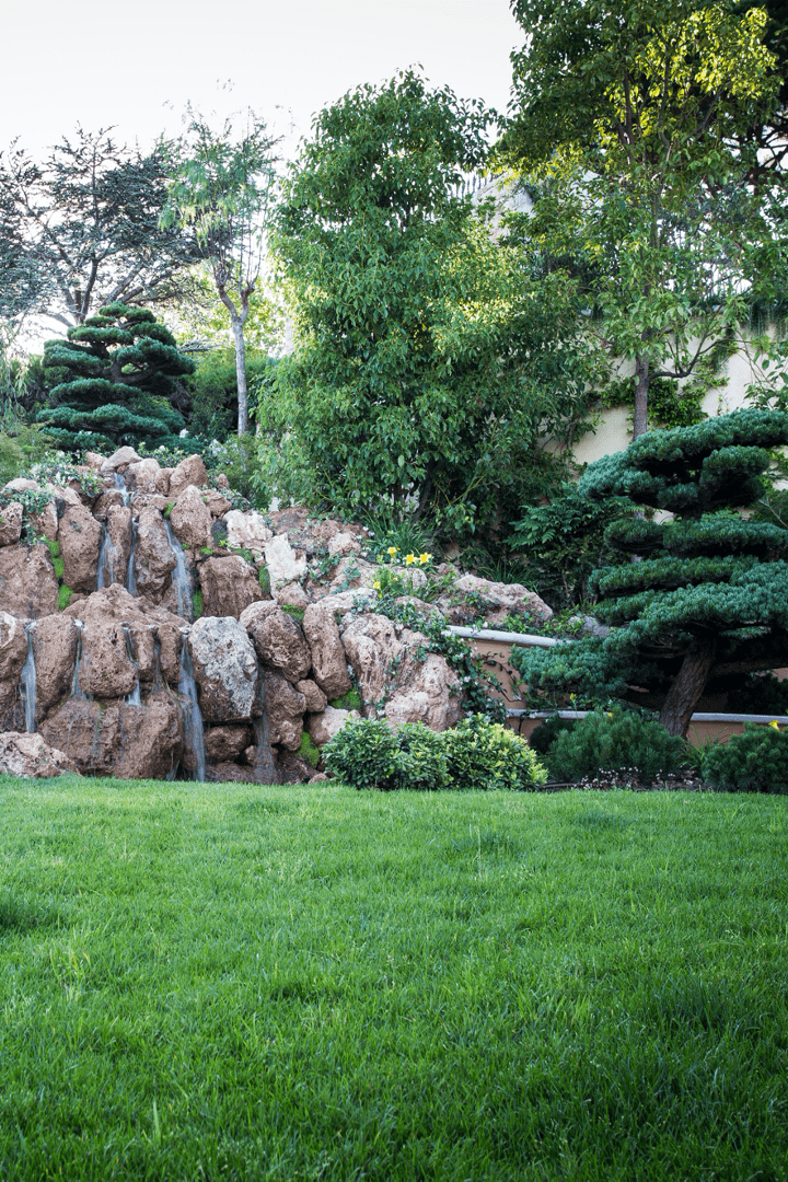 Fountain & watering
